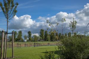 landschapstuin najaar friesland 6