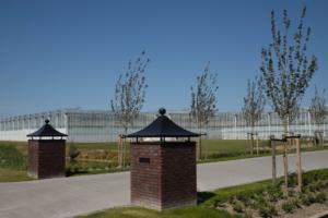 2018-07 tuin overbeek (15)