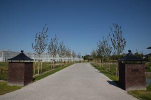 2018-07 tuin overbeek (2)