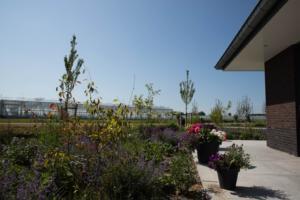 2018-07 tuin overbeek (8)