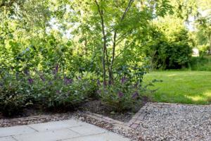 IMG 65572019 tuin winsum selectie 1