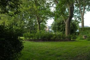 IMG 65702019 tuin winsum selectie 1
