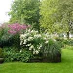 Natuurlijke tuin in 'Fan van je Tuin'