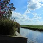 een prachtige tuin in het open Friese landschap