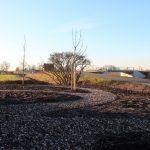 afbeelding bij tuinrenovatie bildtse boerderij