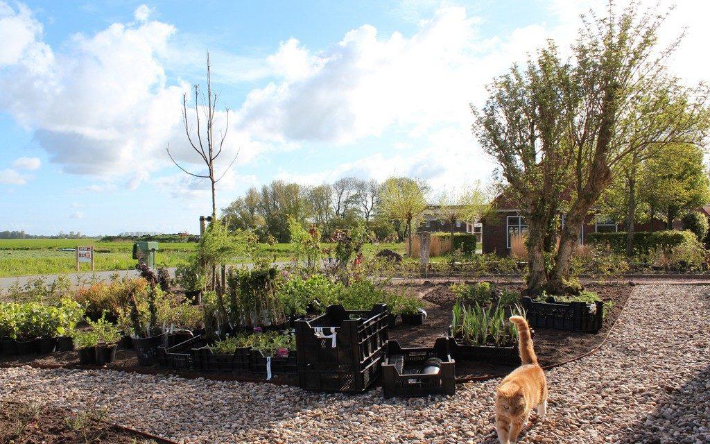 afbeelding bij tuin bildtse boerderij