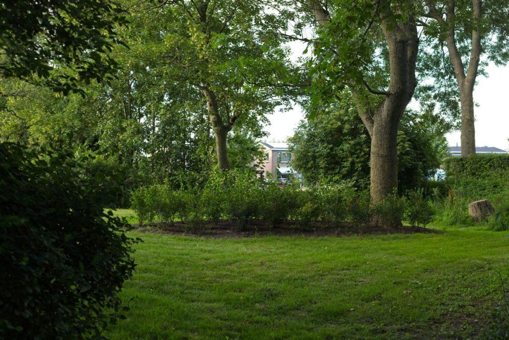ronde vormen in natuurlijke tuin