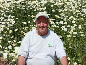Dit is Jappie, een vertrouwd gezicht bij hovenier Van Tuinen Tuinservice