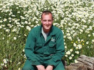 hovenier gezocht ga naar van tuinen tuinservice friesland