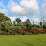 bij tuinman van tuinen tuinservice 1e gesprek altijd gratis