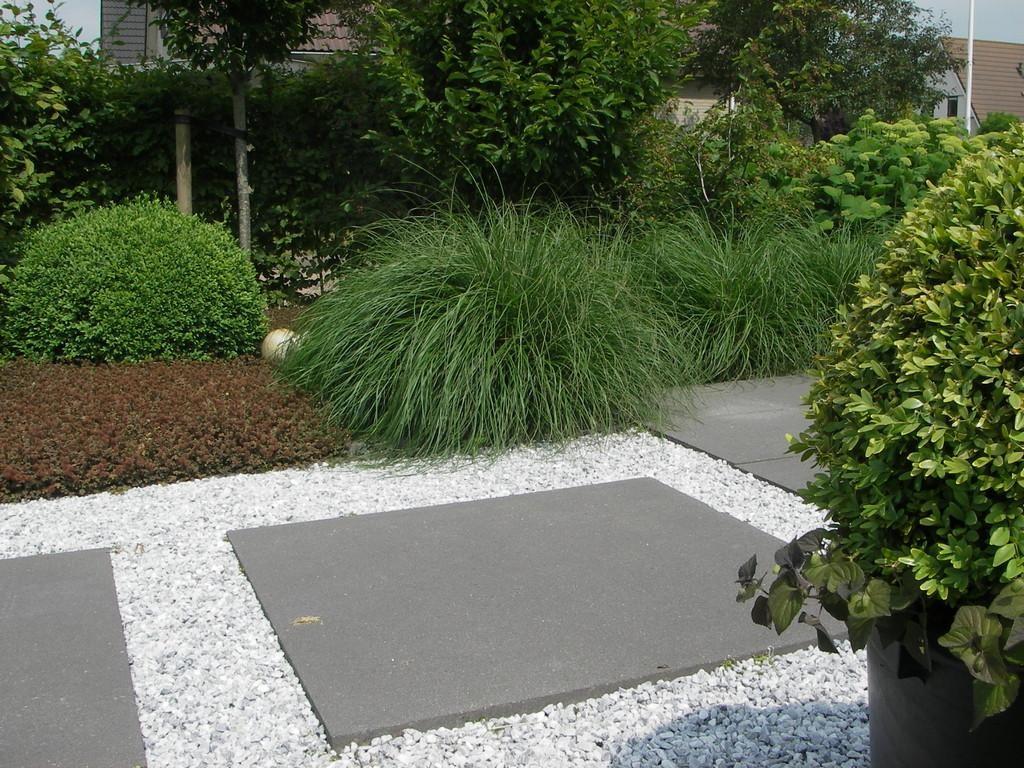 Moderne tuin met contrasten tussen materialen en beplanting
