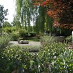 Natuurlijke tuin met spannende elementen